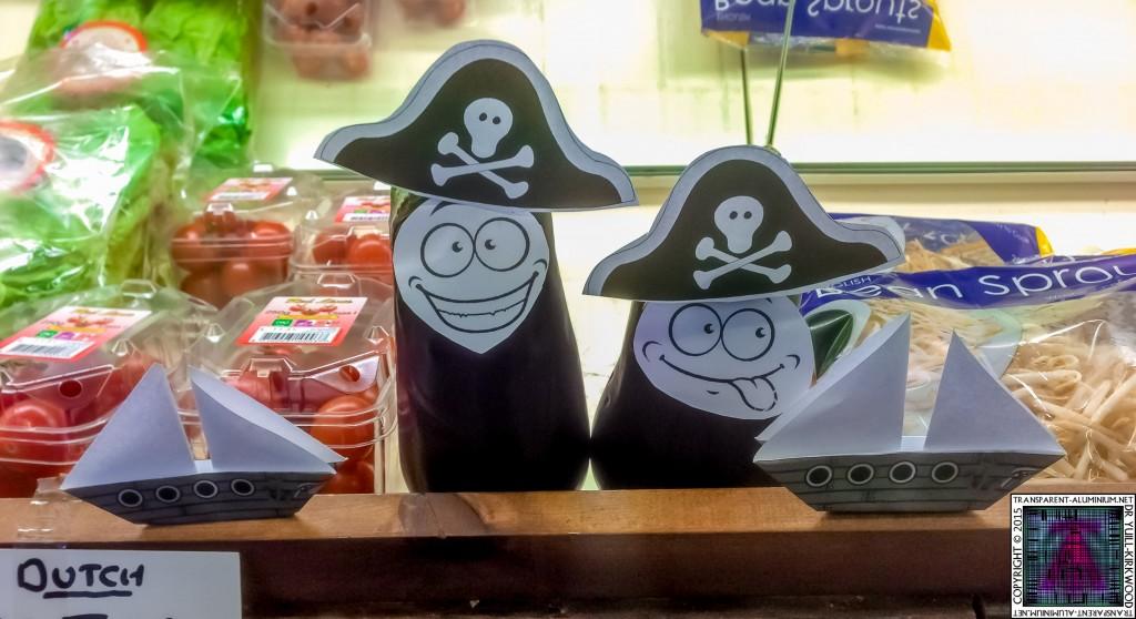 Talk Like a Pirate Day 2015 (2)