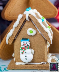 Christmas Gingerbread House - Lets Build (3)