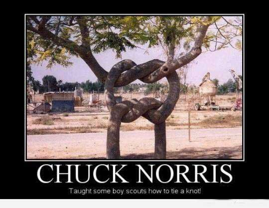 Chuck Norris thought some boys scouts how to tie a knot!