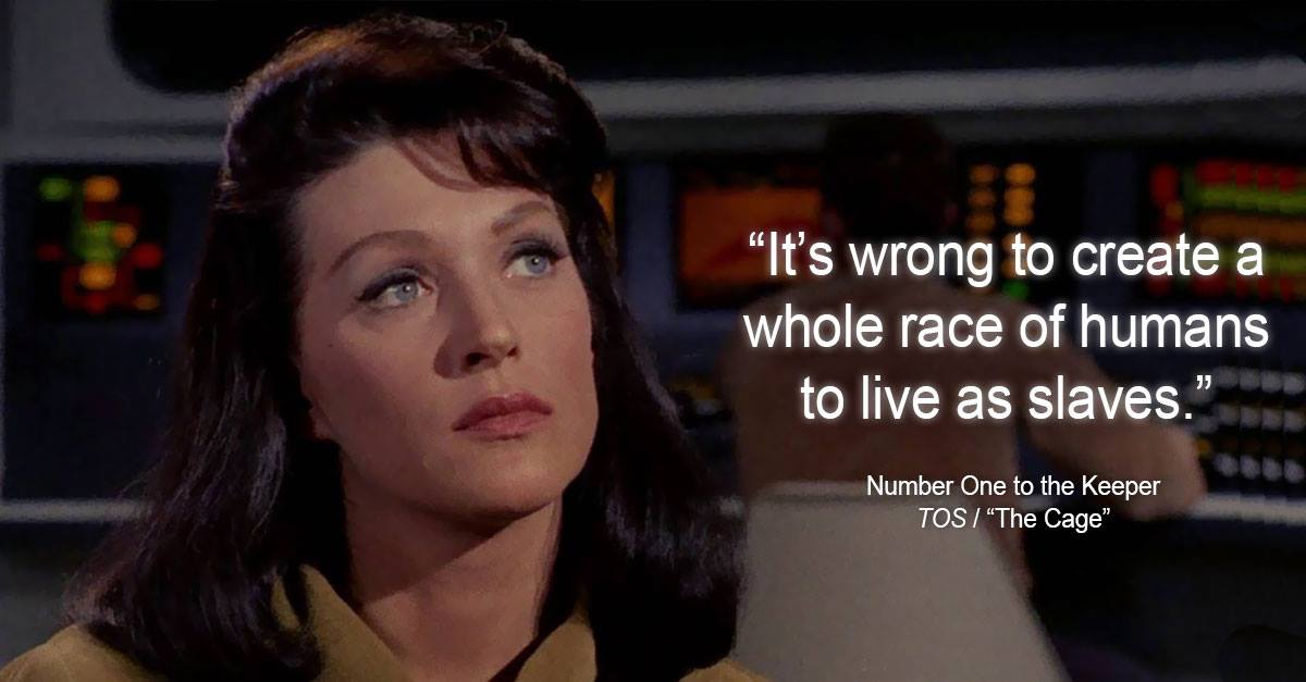 It's wrong to create a whole race of humans to live as Salves.