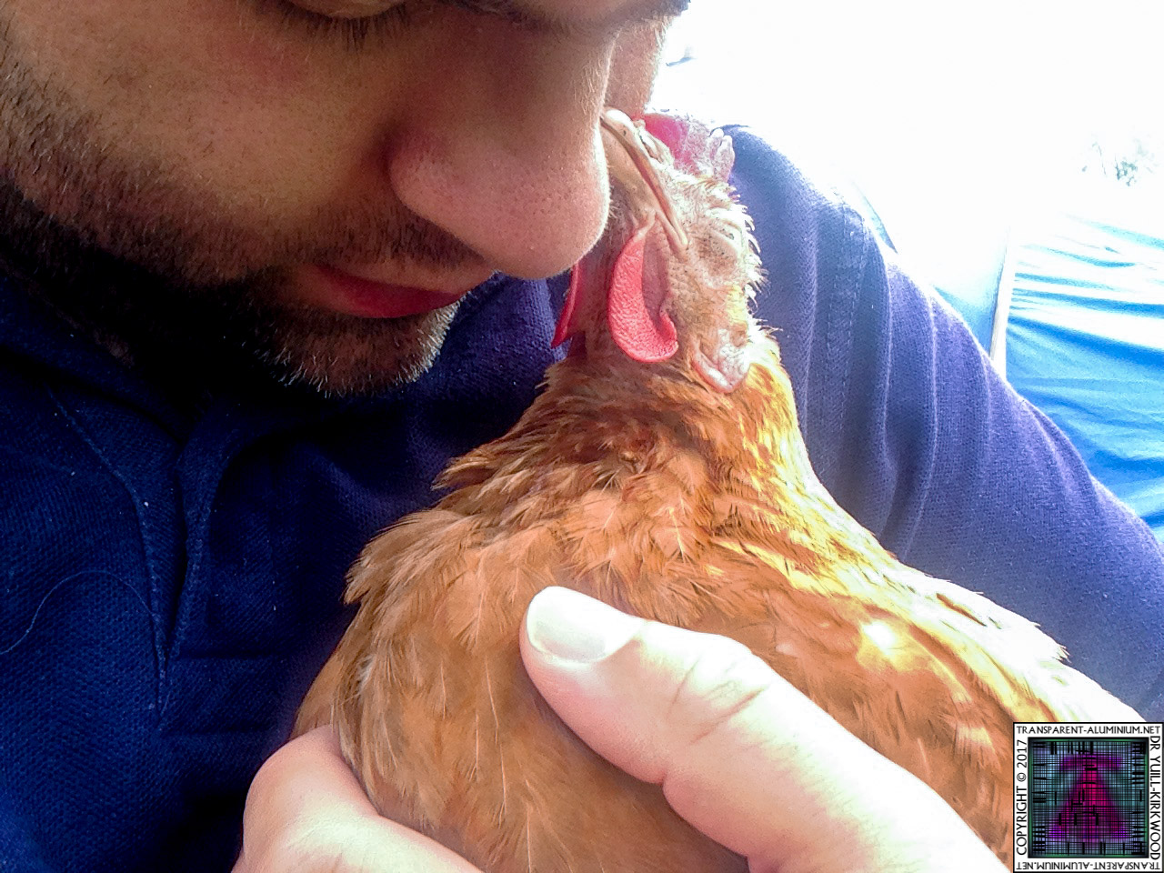 Tales From The Coop: BBQ Missed Me