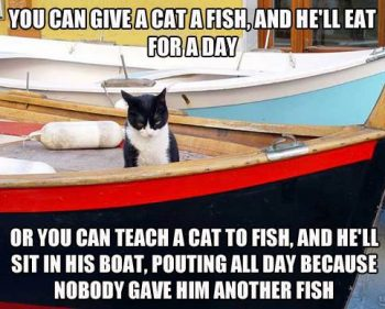 Picture Imp: Teach A Cat To Fish