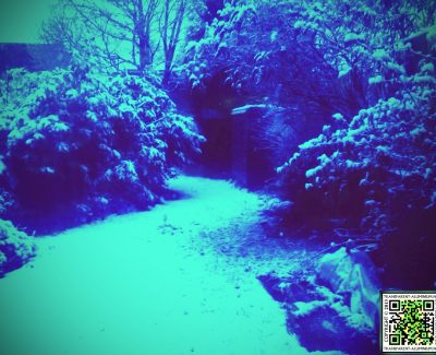 Snow Day: 2013