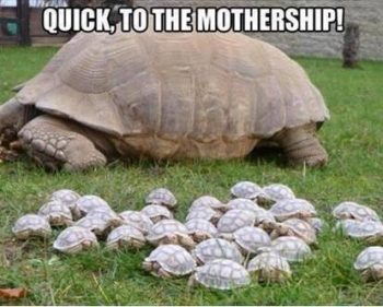 Picture Imp: Quick, To The Mothership