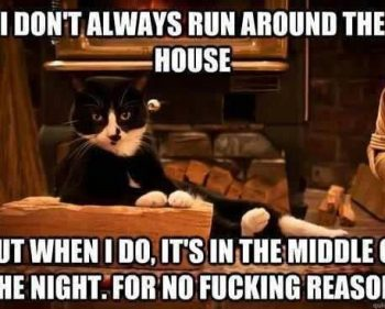 Picture Imp: I Dont always Run Around The House…