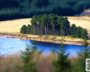 Kielder – Kielder Elf Kirk Viewpoint