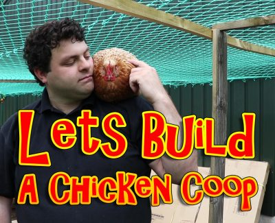 Lets Build A Chicken Coop