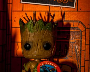 Loot Crate – August 2014 Heroes Photos