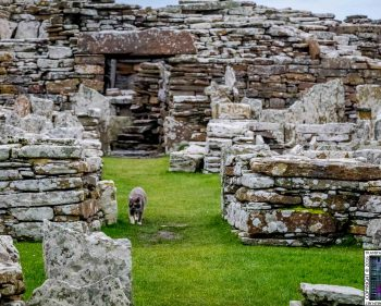 Broch of Gurness – Orkney