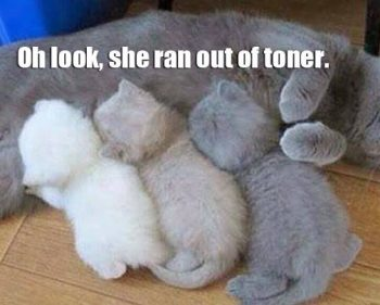 Picture Imp: Ran Out Of Toner