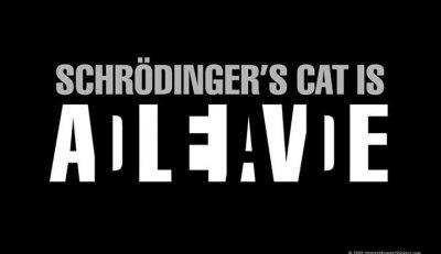 Picture Imp: Schrodingers Cat