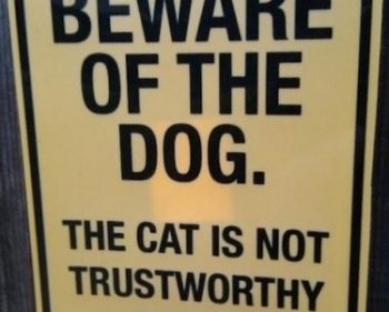 Picture Imp: Beware Of The Dog
